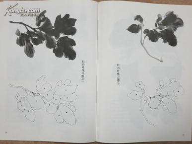 怎样画牡丹花画法技法---中国画自学丛书_尹延新_孔图片