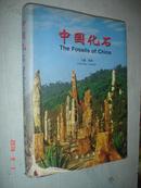中国化石 (中英文对照)(2001年精装大16开1版1印)