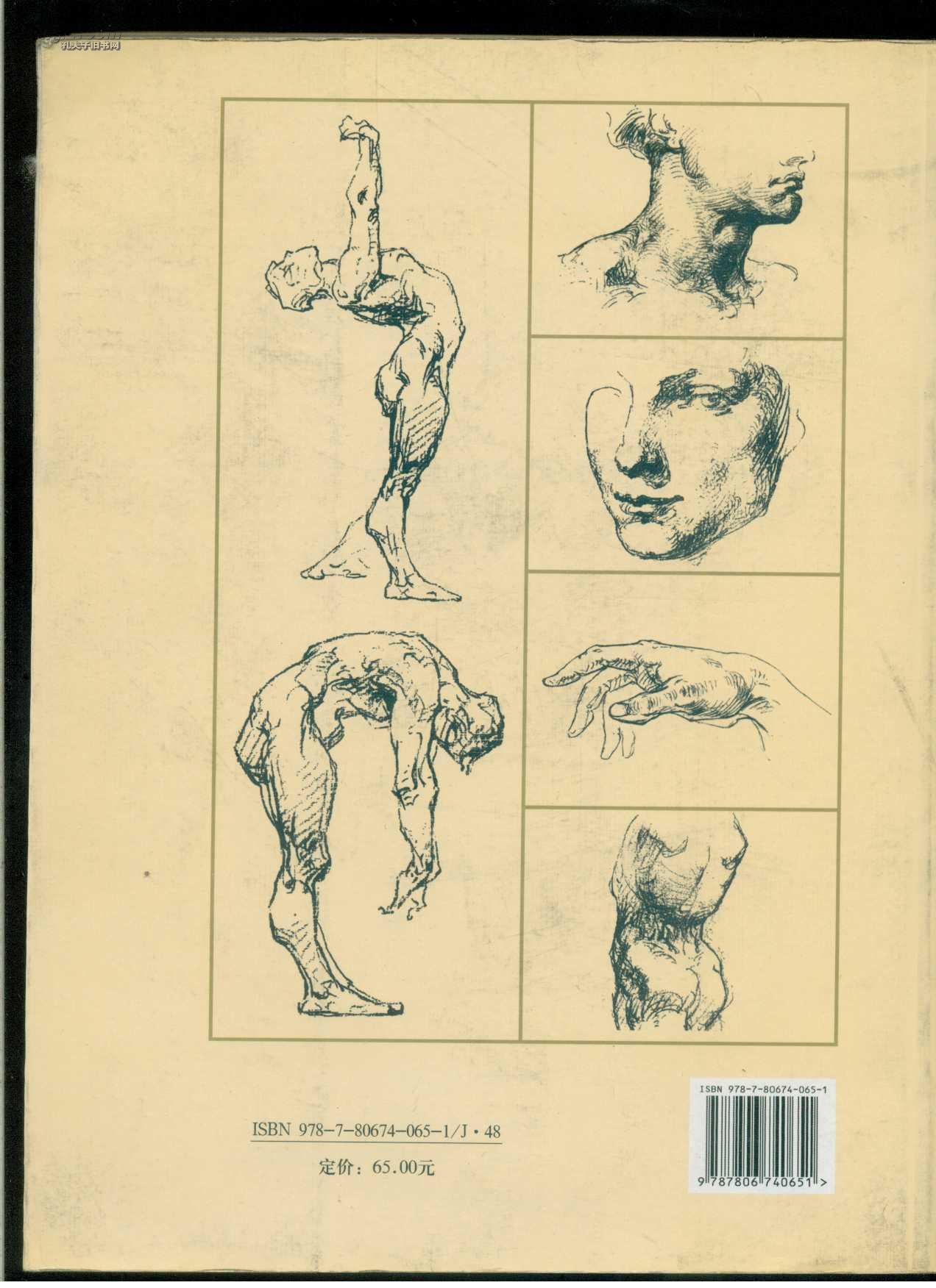 伯里曼人体结构绘画教学 大16开