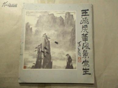 王鸿炭笔风景写生图片