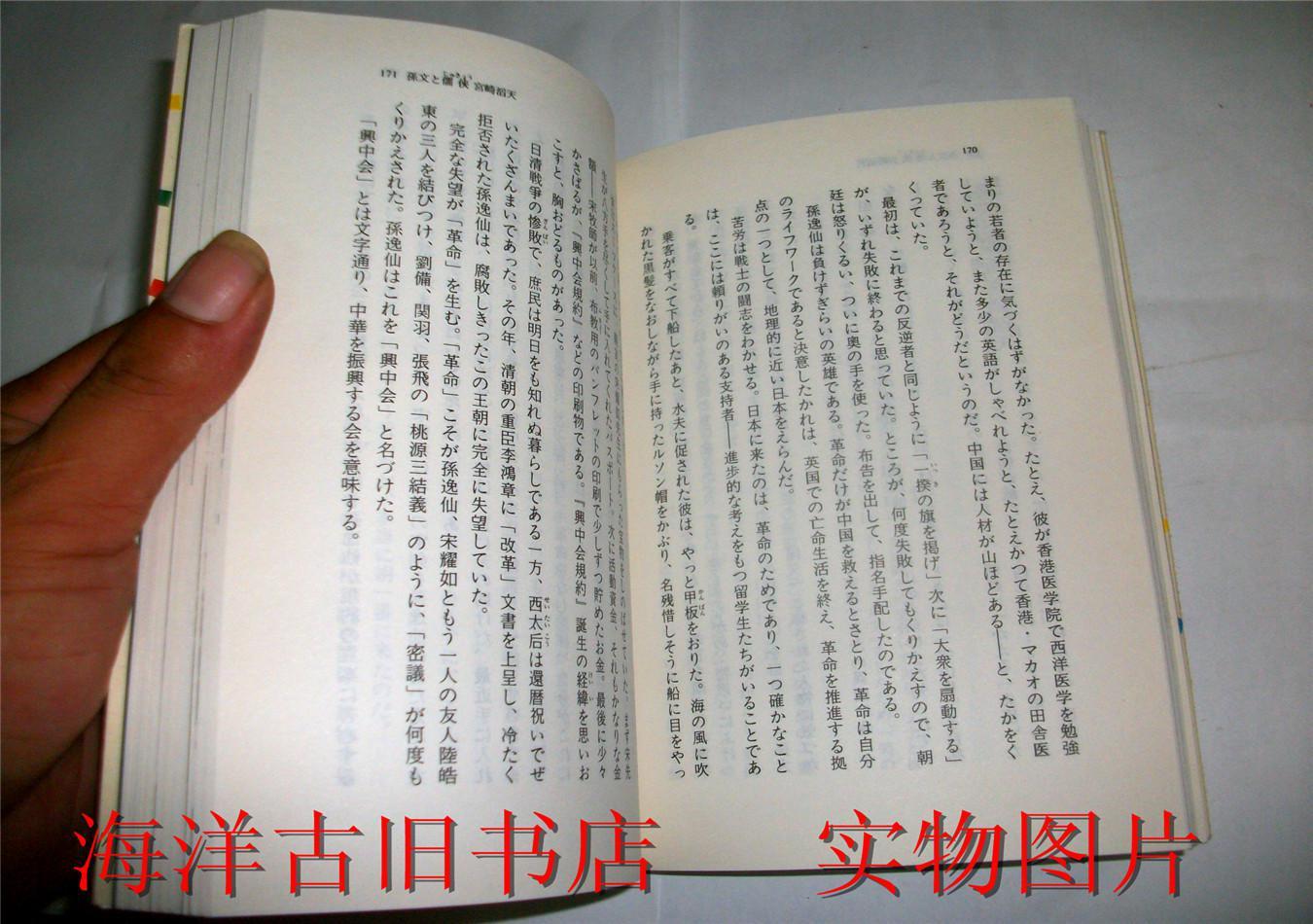 千年の思い (叶文玲 著/大田光华 訳)图片