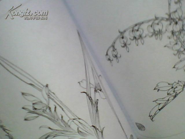 工笔花卉白描画集[家边图片