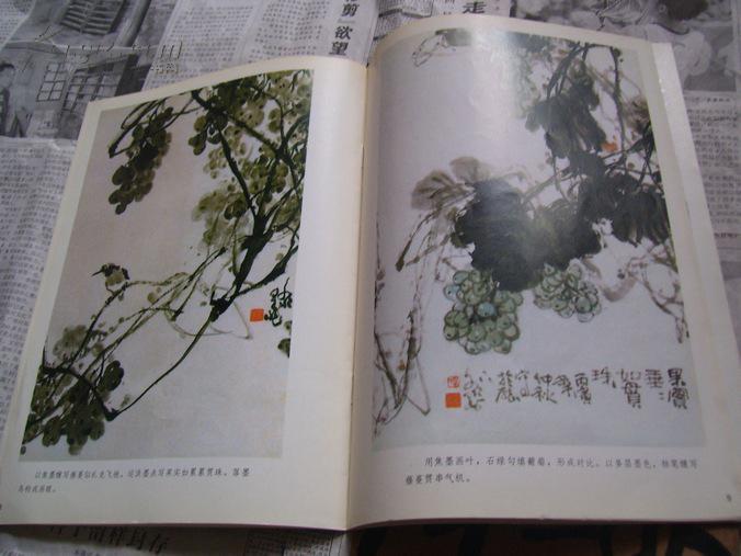 【图】美术技法丛书:葡萄画法图片