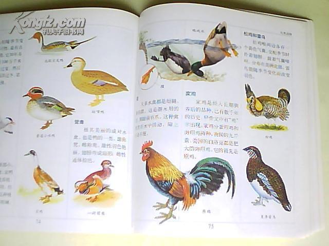 世纪儿童百科图典