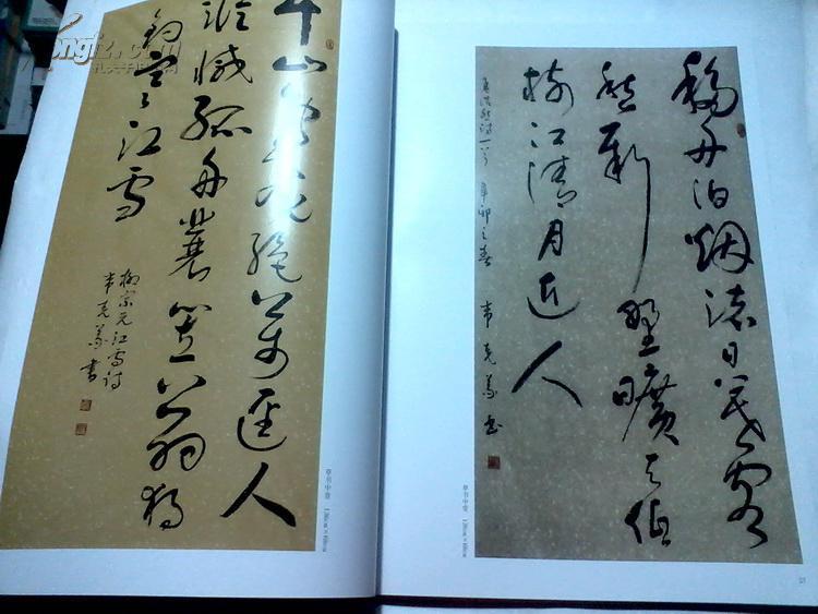 韦克义书法作品集 中国当代书法名家 跨世纪2011中国书法十大年度人物图片
