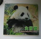 走进大熊猫 全新未开封