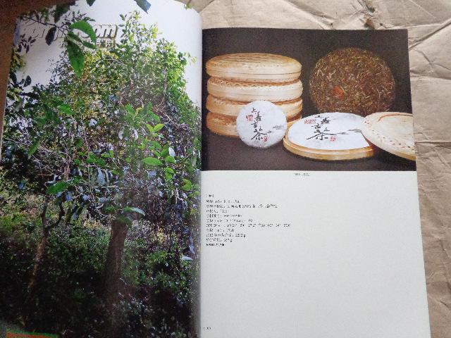 季拍卖会 勐海古树茶图片