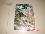 山东画报1982,1