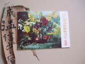 何孔德油画静物写生<彩色活页16张全>  1984年1版1印