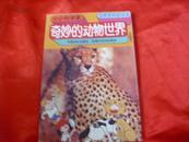奇妙的动物世界                         S10(2)