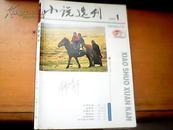 小说选刊2013-01期