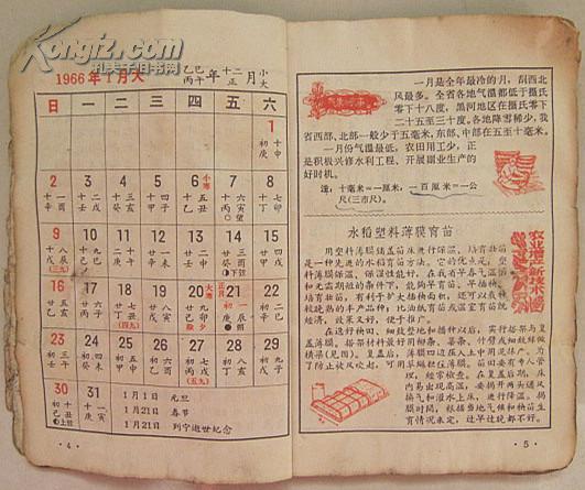 1966年历书(丙午年)图片