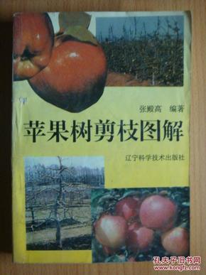 苹果树剪枝图解