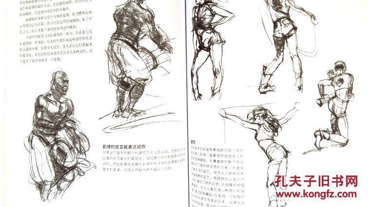 【图】着装人物素描技法---西方经典美术技法译丛图片