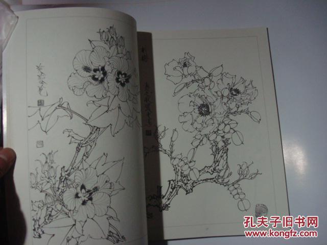 工笔花卉白描画集 王道中 绘,大16开,88品,r 11架图片