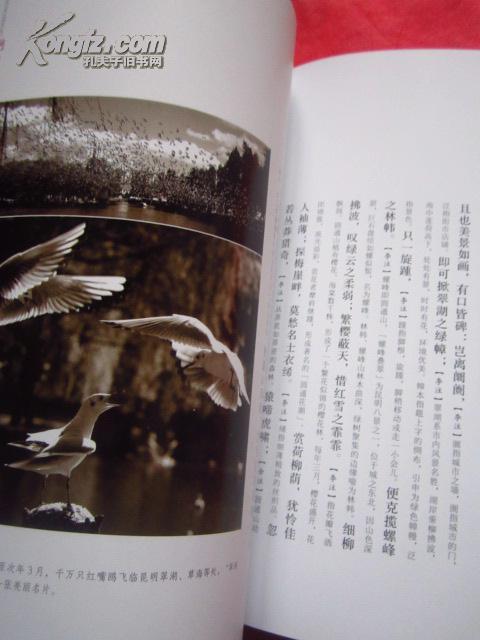 《春城赋》大16开铜版纸印 墨迹行书体印刷 由李孝友/余嘉华大篇幅