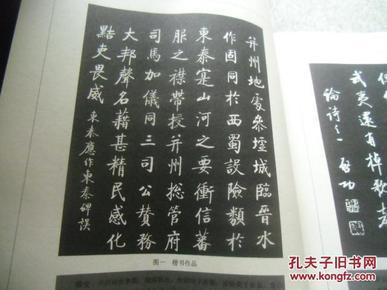 启功诗词钢笔行书字帖. 第一辑图片