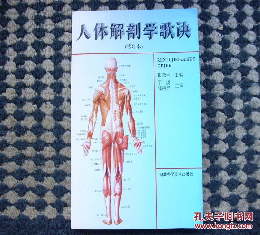人体解剖学_人体解剖学歌诀(修订本)