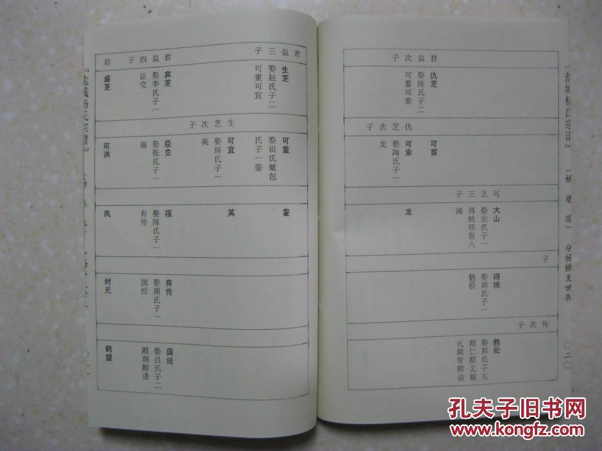 盐城杨氏宗谱(杨港派,第七卷上,下二本,四知堂.图片