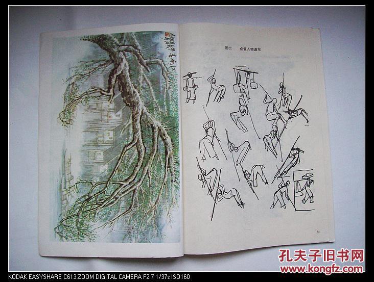 【图】中国书画函授大学国画讲义.中国画山水写生图片