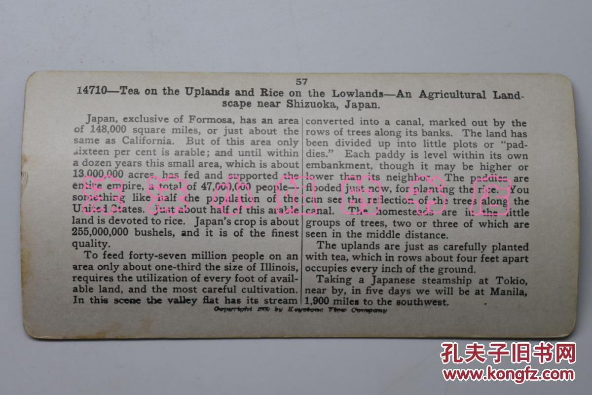 全网唯一《静冈附近的茶叶和水稻》清代立体老照片 3d