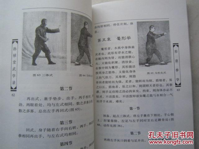 《孙禄堂武学录》形意拳学,八卦拳学,太极拳学,拳意述