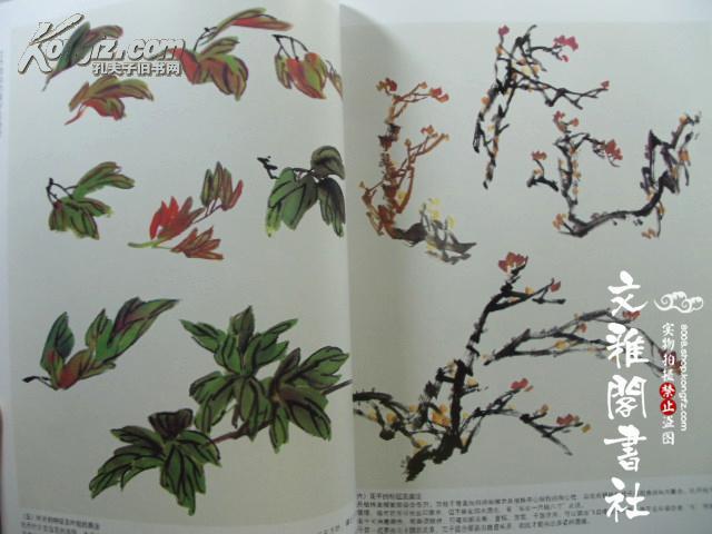 【图】牡丹 中国画教程/王宣明/写意国画花卉的画法
