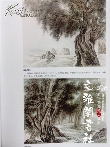 画法 中国画名家技法丛书/张葵/写意山石云水步骤图