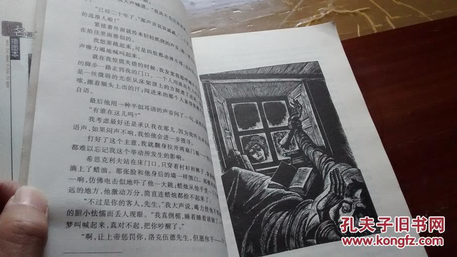 呼啸山庄 插图本图片