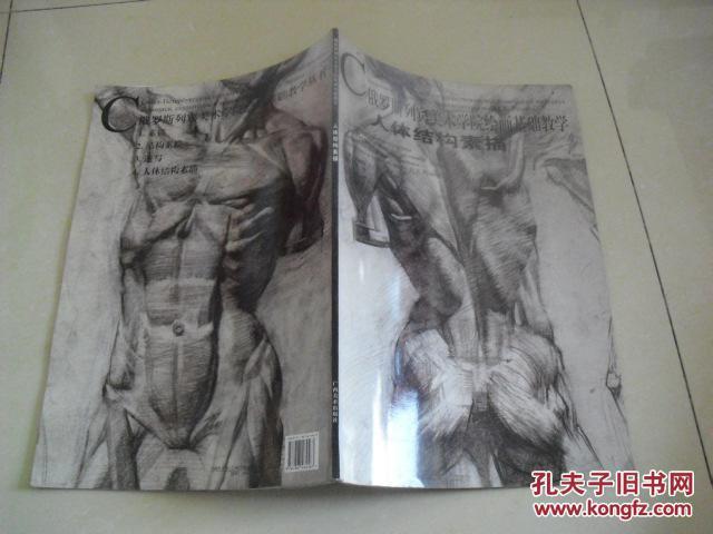 俄罗斯列宾美术学院绘画基础教学----人体结构素描图片