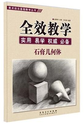 【图】美术技法基础教学丛书图片