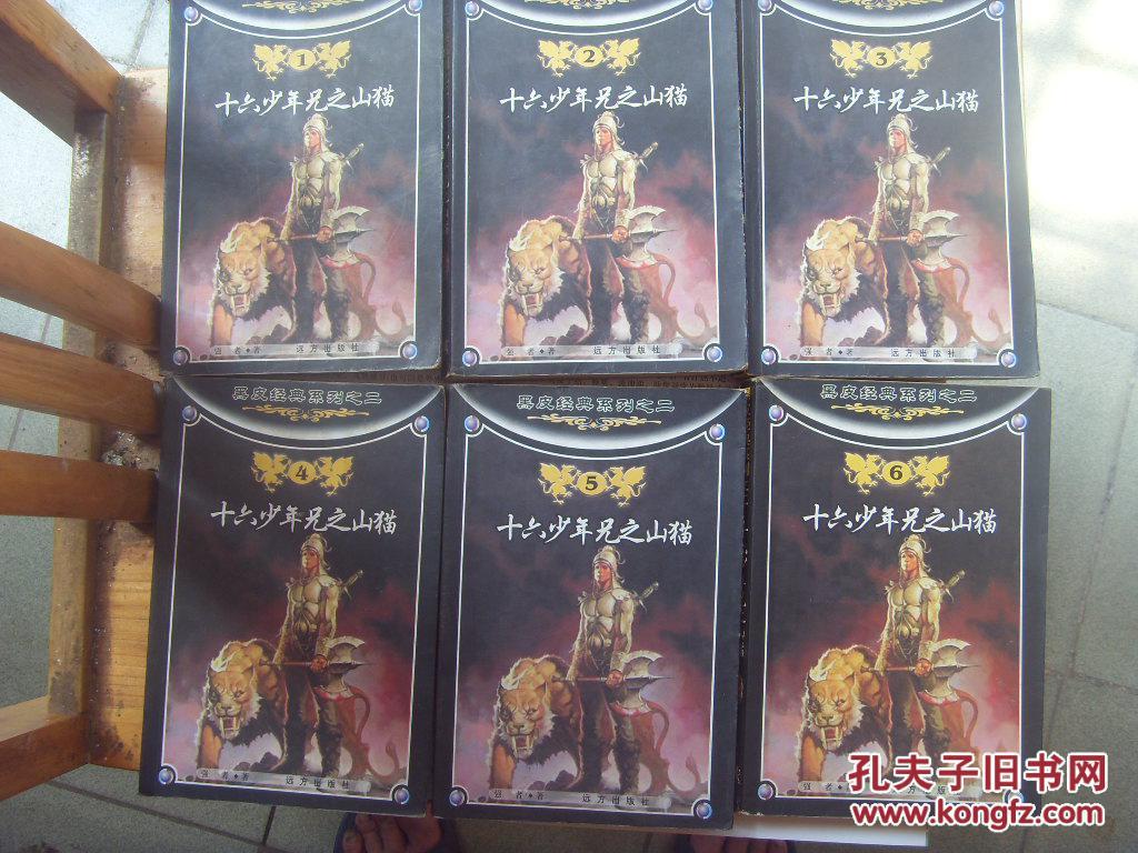 黑皮经典系列:《十六少年兄之山猫》1-6卷图片
