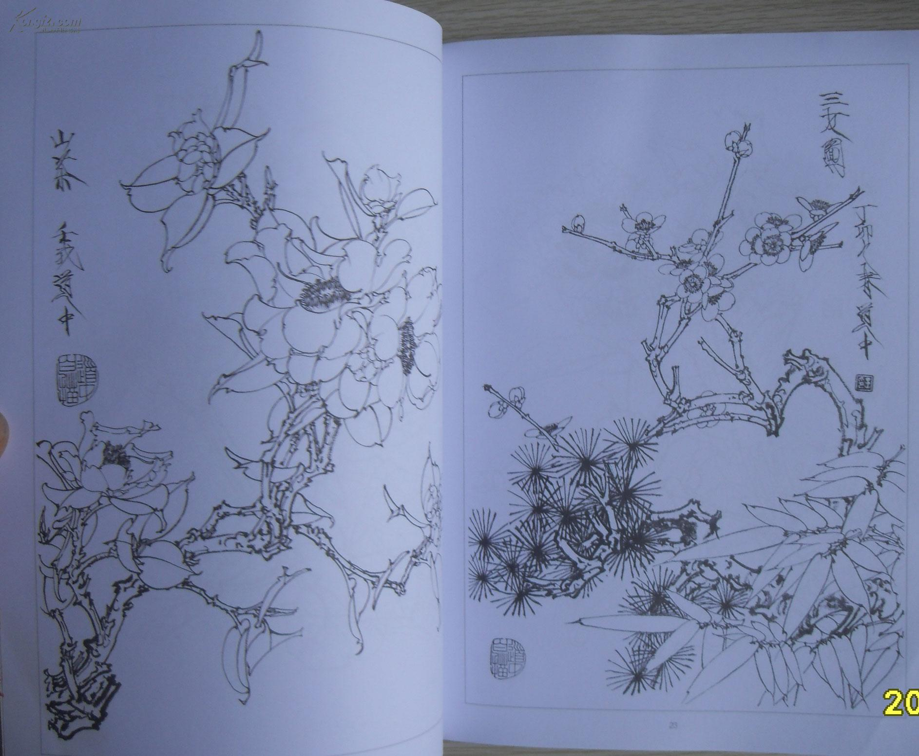 工笔花卉白描画集 b1图片