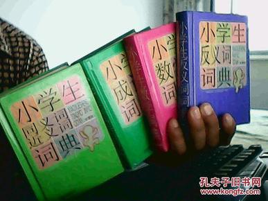 小学生数学词典 彩图版高清图片