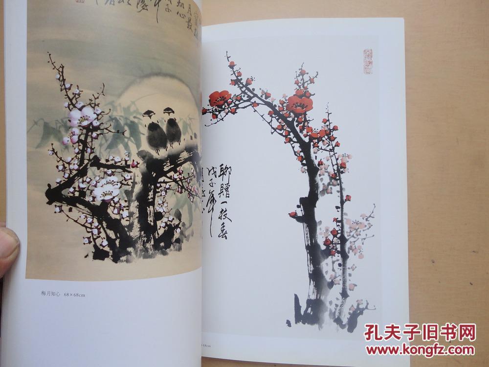 【图】16开《当代中国书画名家99王朝阳》品好图片