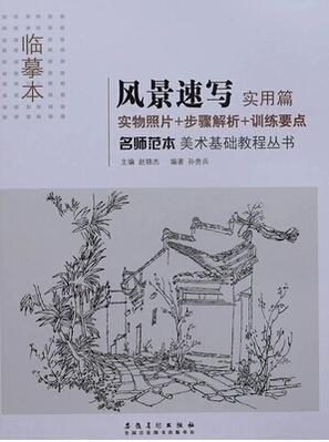 美术基础教程丛书图片