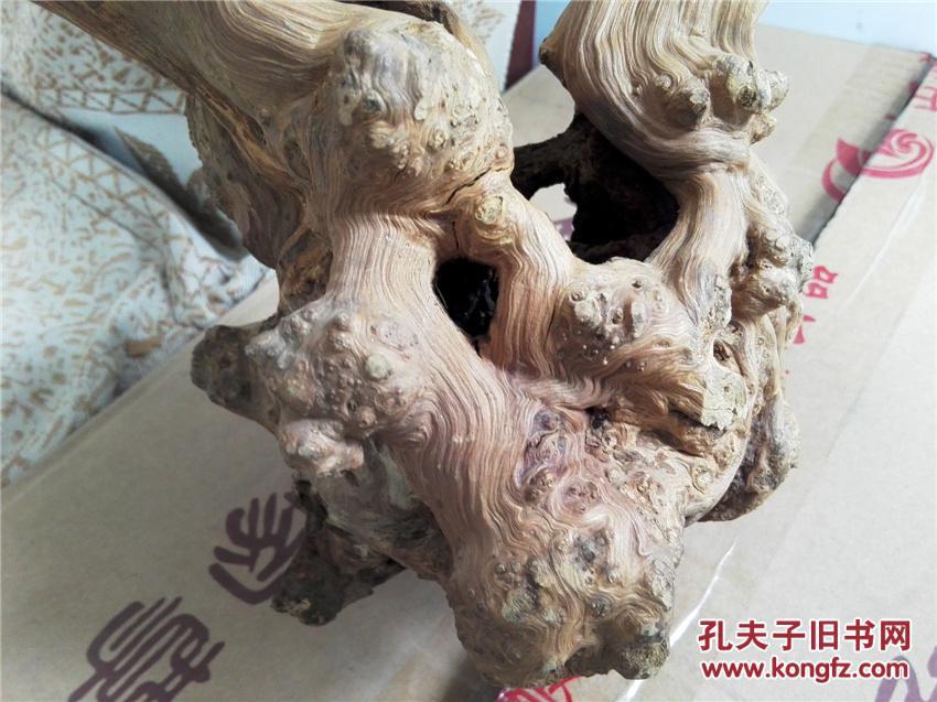 """""""树瘤""""多!根雕随形摆件【合欢】.庭中栽得红荆树,十月花开不待春."""