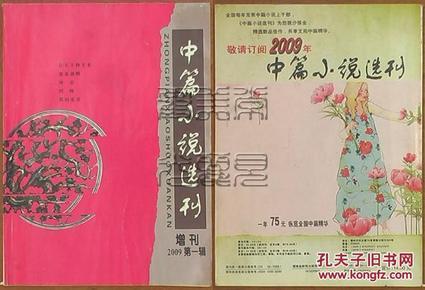中篇小说选刊 2009增刊第一辑
