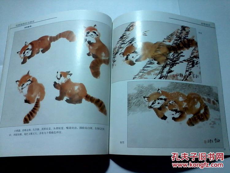 写意国画技法速成 动物图本 怎样画猫 松鼠 小熊猫 猩猩 狗猴子 老虎