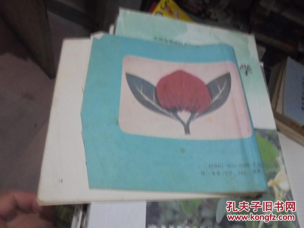 儿童手工丛书:灯笼.绣球剪纸