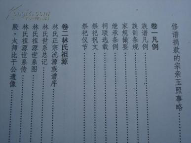 林氏族谱 琼山市甲子镇 东堡图 龙井村冲祖1 4卷图片