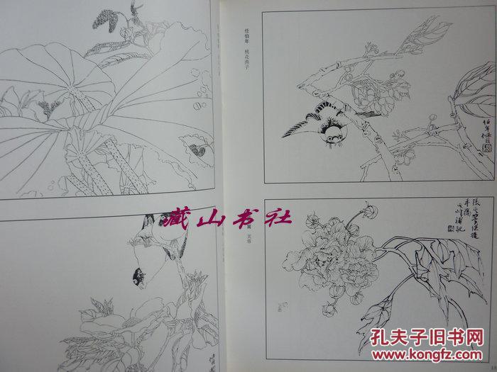 白描花卉技法 中国工笔花鸟画谱图片