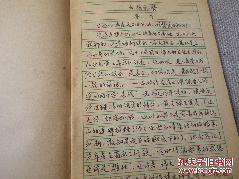 钢笔系列字帖行书 第五册图片