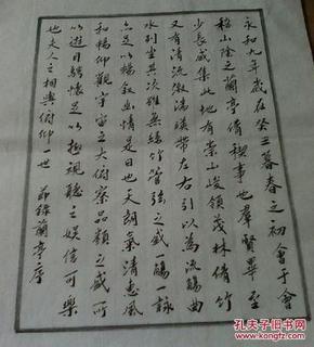 本地名家硬笔书法--崔焕京节录《兰亭序》【无签名】图片