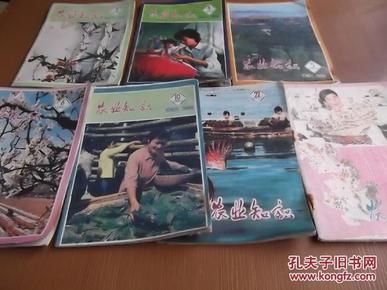 农业知识  1985年第2、4、5、6、10、22、23/24(7册)