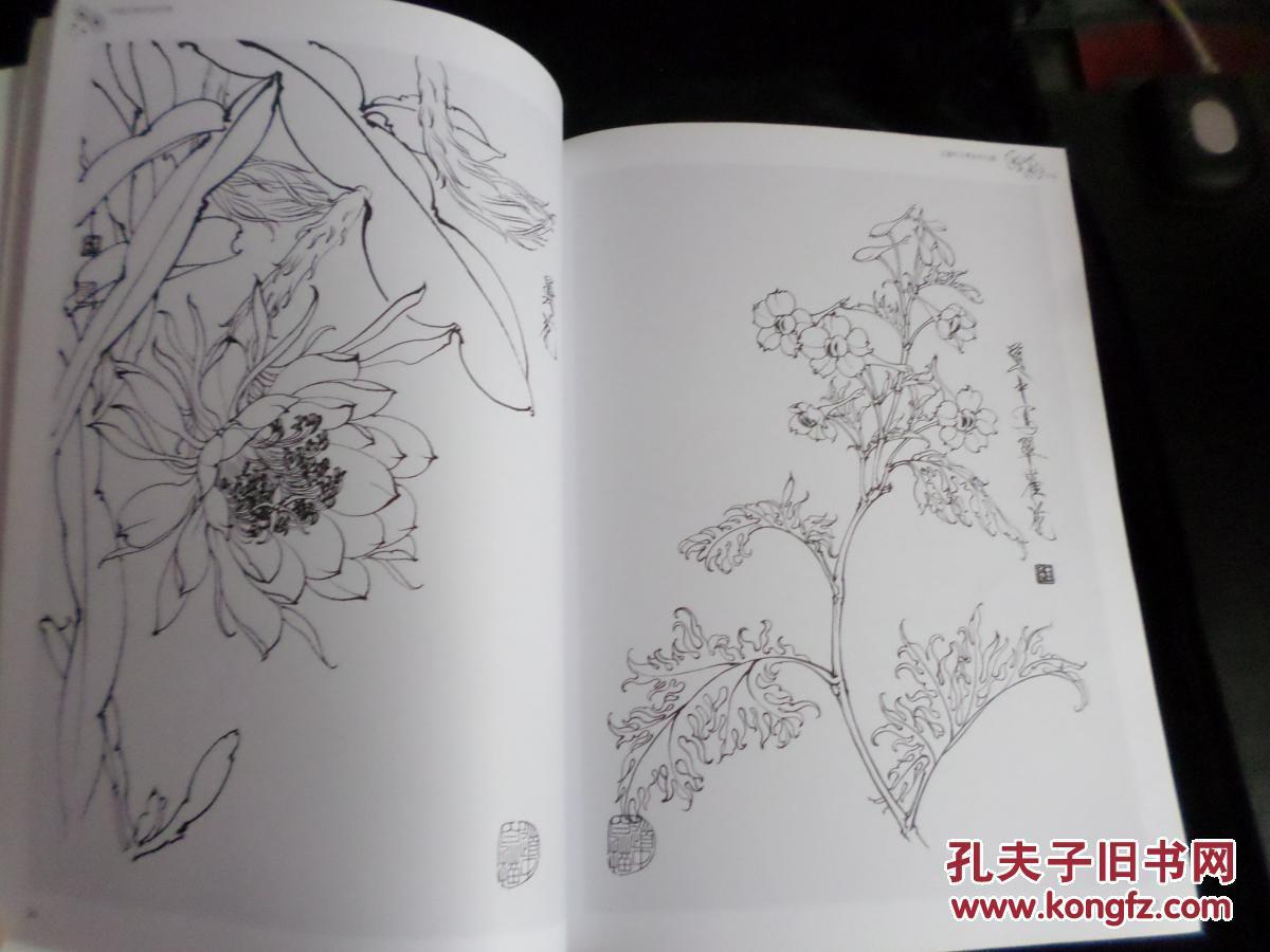 中国名家技法经典:王道中工笔花卉白描图片