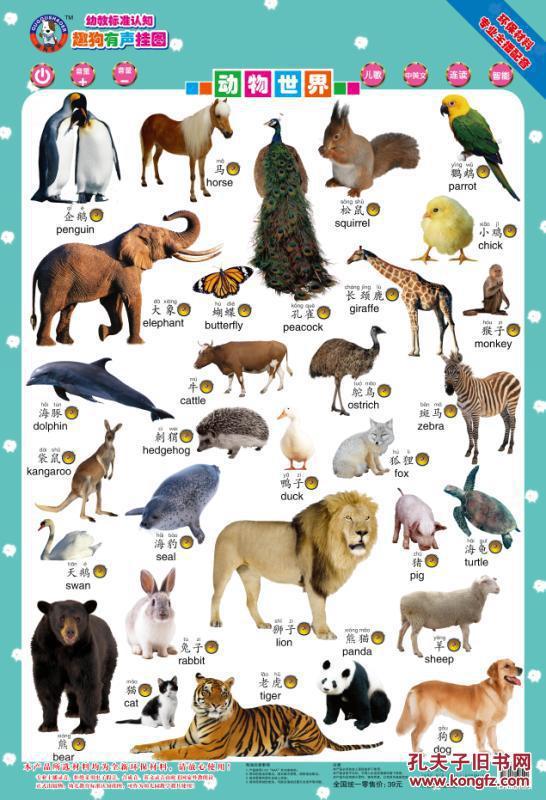 动物世界-认恐龙-趣狗有声挂图