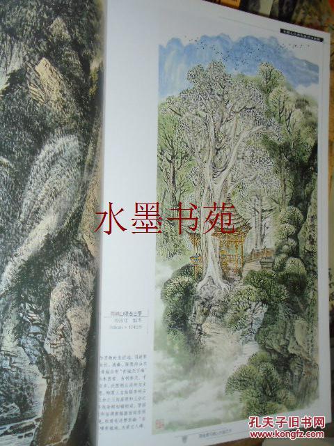 中国山水画名家技法讲座:蒋维德写意山水画艺术图片