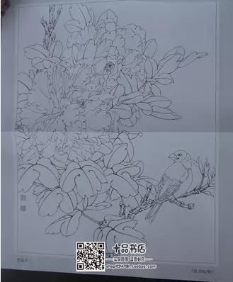 【图】牡丹小品原大版实用白描画稿图片