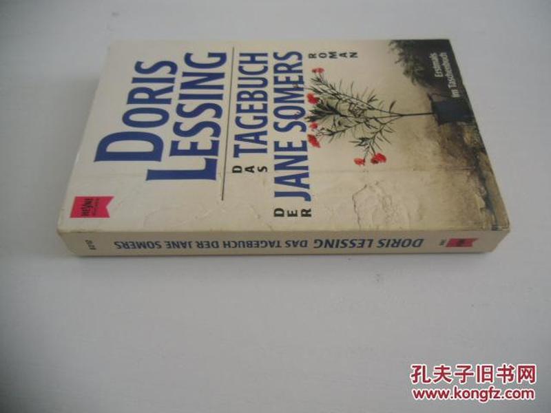 德文原版   Das Tagebuch der Jane Somers. Roman